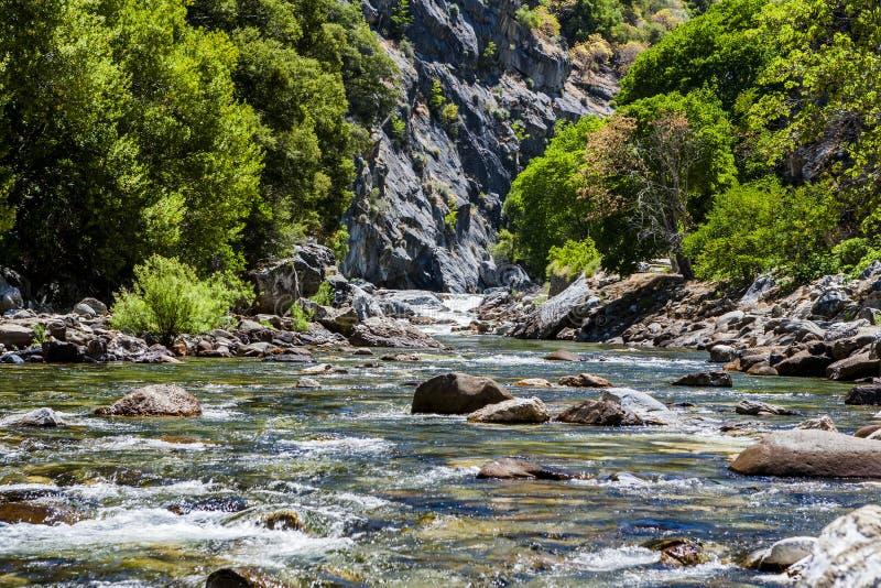 Californische sequoiakreek, Weg 180, het Nationale Park van de Koningencanion, Californ stock afbeelding