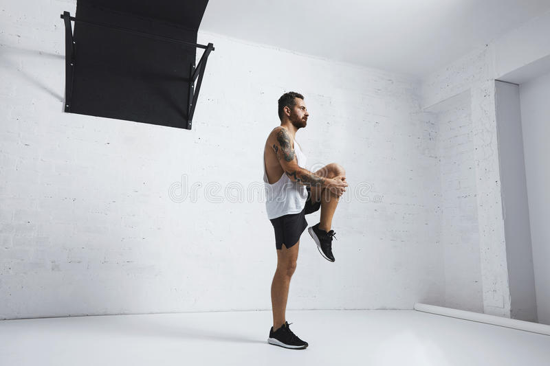 Calisthenic and bodyweight exercises. Athletic young man doing knee raises, stretching his legs, looking right side, on white brick wall next to pull bar royalty free stock photography
