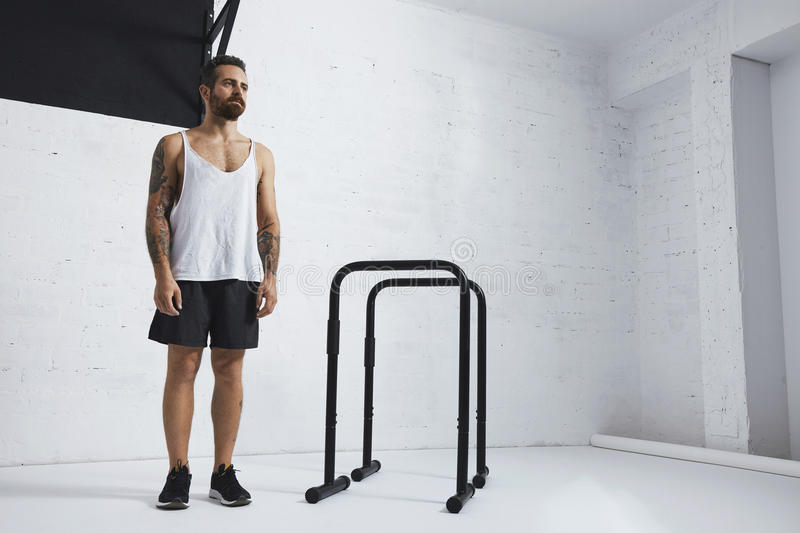 Calisthenic and bodyweight exercises. Brutal tattooed bearded male athlete in blank white tank t-shirt standing near to parallel bars and pull bar looking on stock images