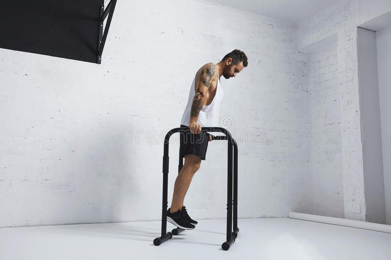 Calisthenic and bodyweight exercises. Strong tattooed in white unlabeled tank t-shirt male athlete shows calisthenic moves Holding position on parallel bars stock photography