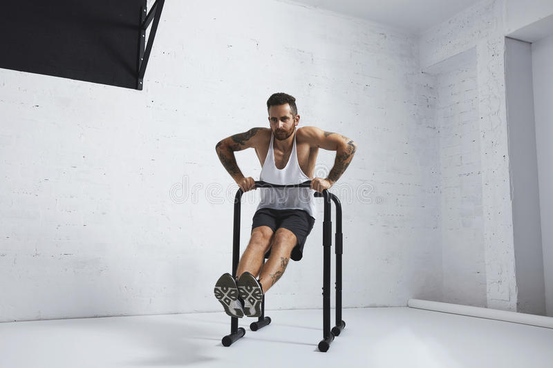Calisthenic and bodyweight exercises. Strong tattooed in white unlabeled tank t-shirt male athlete shows calisthenic moves Straight dips move two, dip in on one royalty free stock image