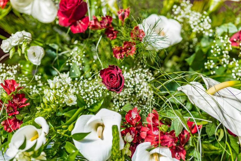 Calla красной розы и белых стоковое фото