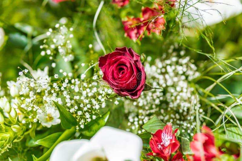 Calla красной розы и белых стоковое фото rf
