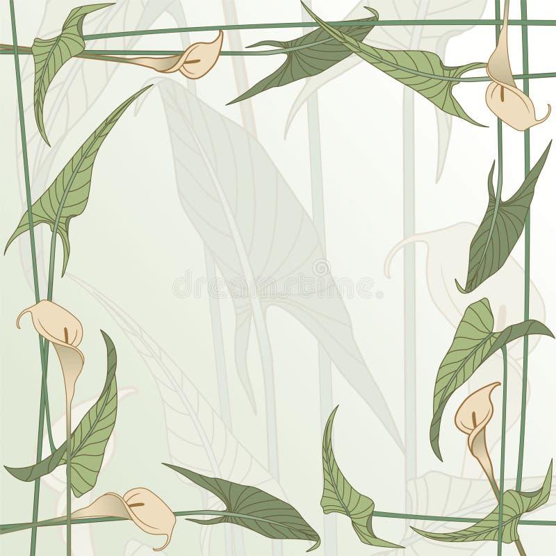 calla stock illustrationer
