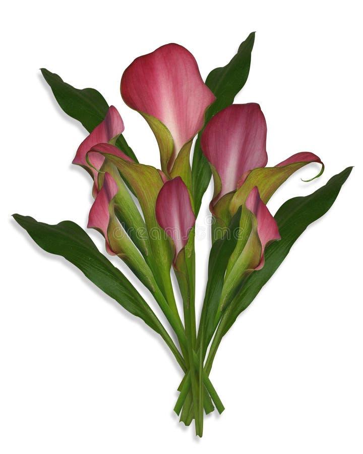 Calla-Lilien-Blumenstrauß der Blumen vektor abbildung