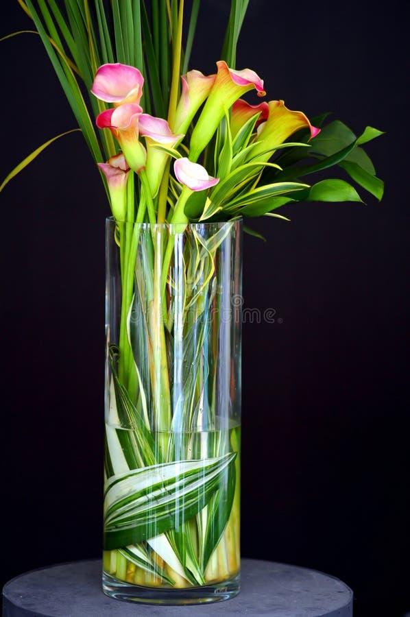 Calla Lilies in Vase royalty free stock photos