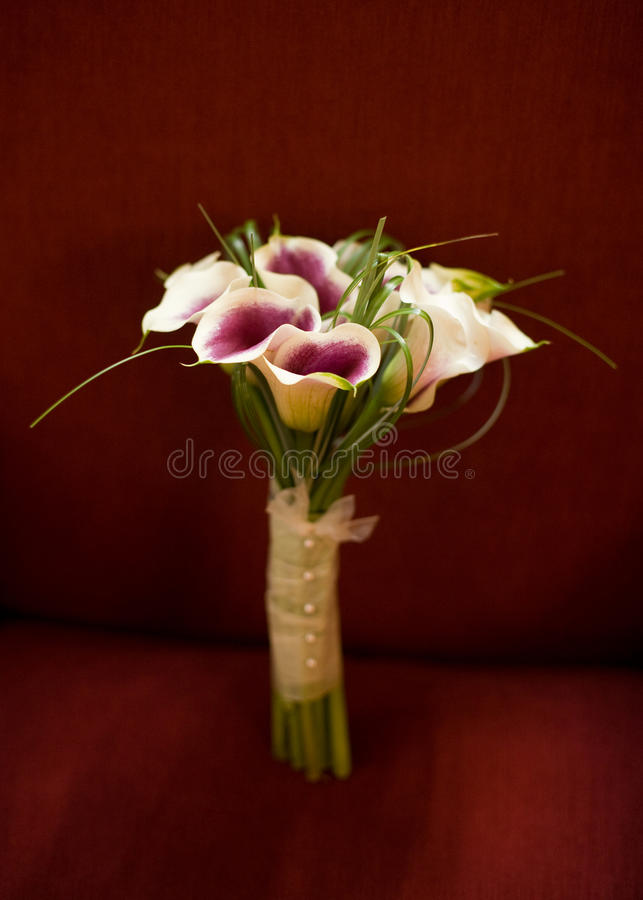 Download Calla Lily Bouquet stock photo. Image of hold, smell - 29633792