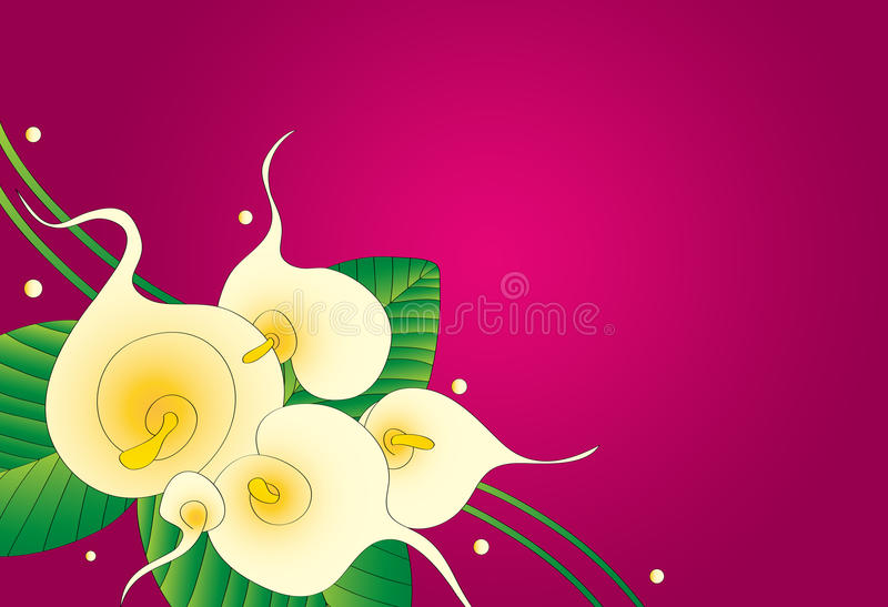 Download Calla Lily Floral Background Stock Illustration - Image: 26811112