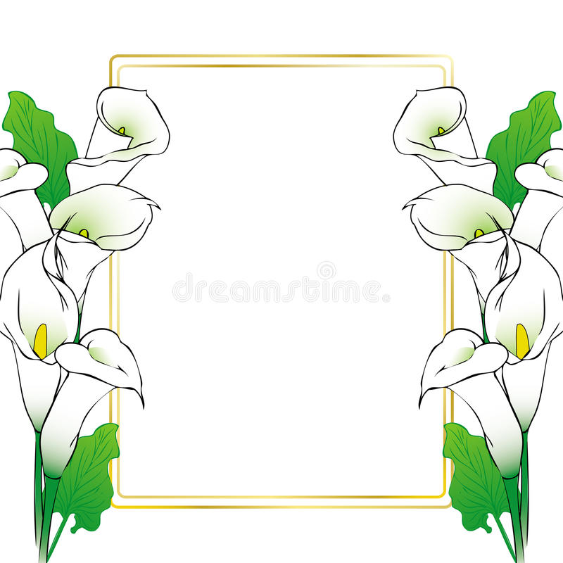 Calla lily flowers card stock vector. Illustration of wedding - 65401333