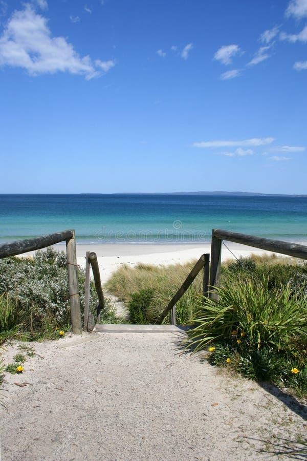 callala пляжа Австралии стоковое изображение rf