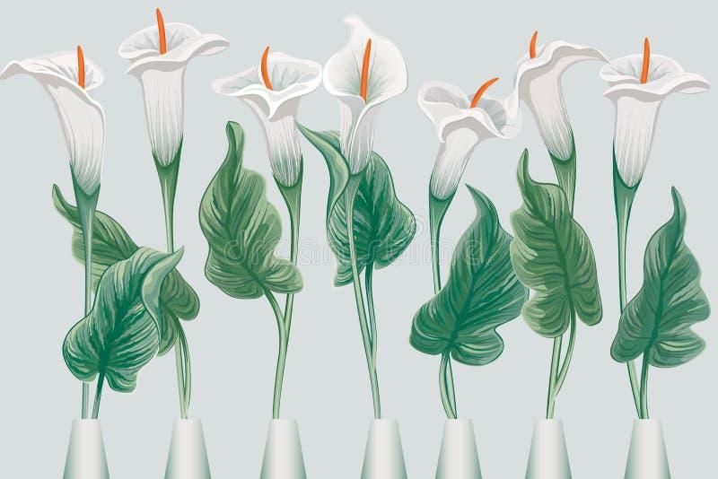 Callas royalty free illustration