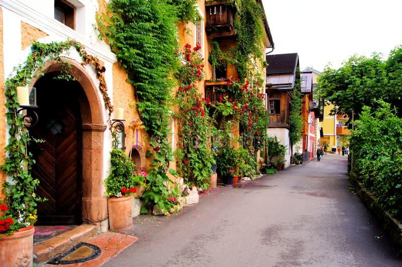Calle alineada flor imagen de archivo
