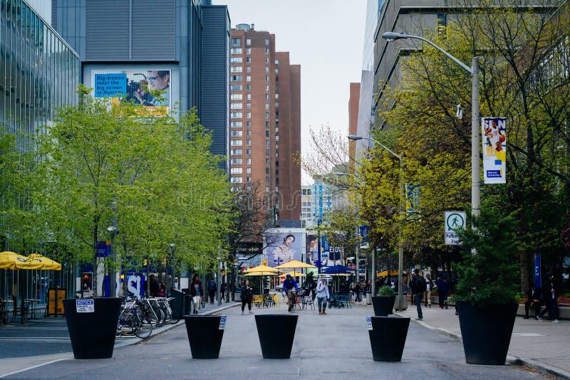 Calle de Gould, en la universidad de Ryerson, en Toronto, Ontario foto de archivo