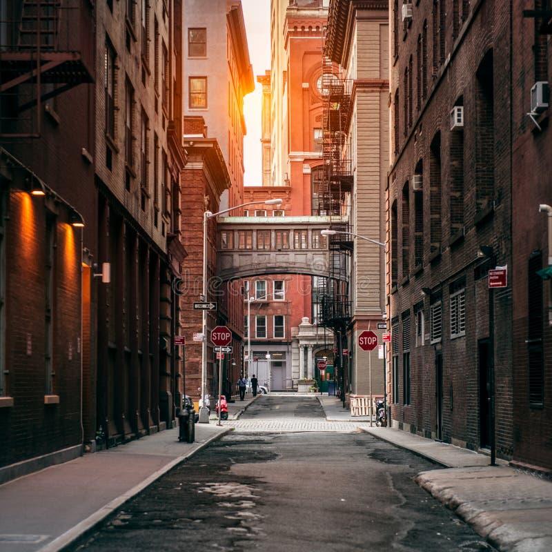 Calle de New York City en el tiempo de la puesta del sol Calle escénica vieja en el distrito de TriBeCa en Manhattan fotografía de archivo libre de regalías