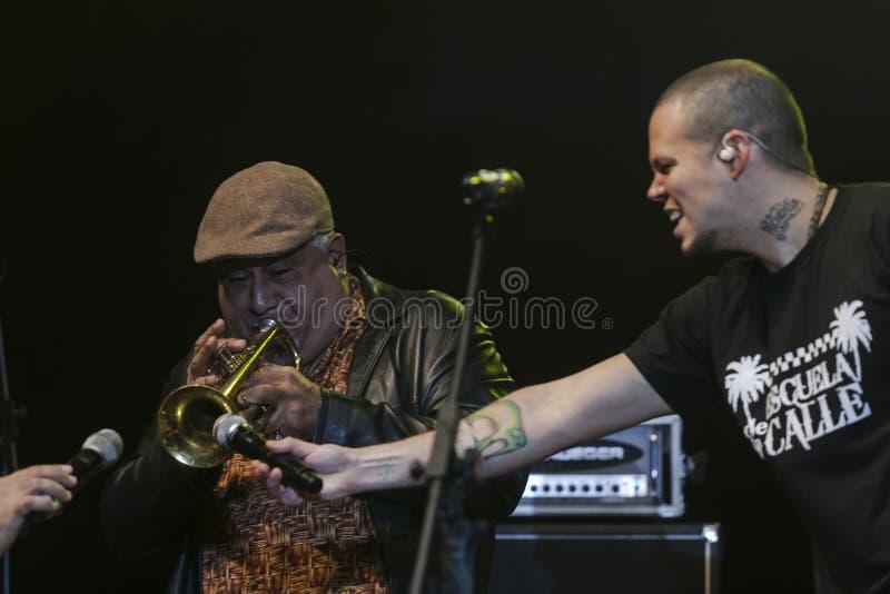 Calle 13 en concierto imagen de archivo libre de regalías