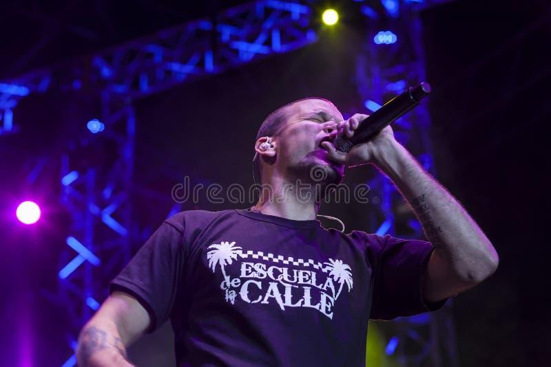 Calle 13 en concierto fotografía de archivo libre de regalías