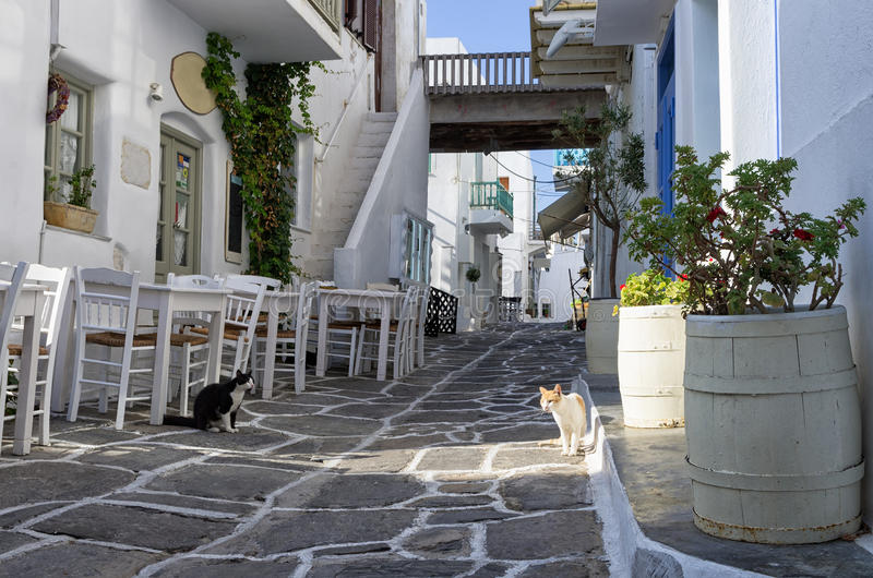 Calle en la isla de Paros, Cícladas, Grecia fotografía de archivo
