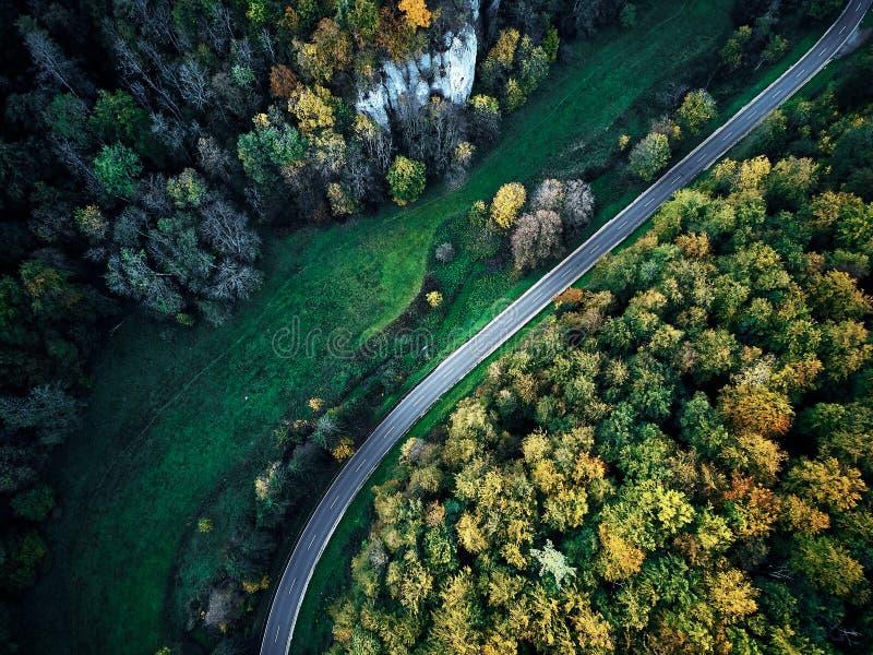 Calle entre los árboles del otoño en la opinión aérea del abejón del bosque desde arriba, dji mavic imagenes de archivo