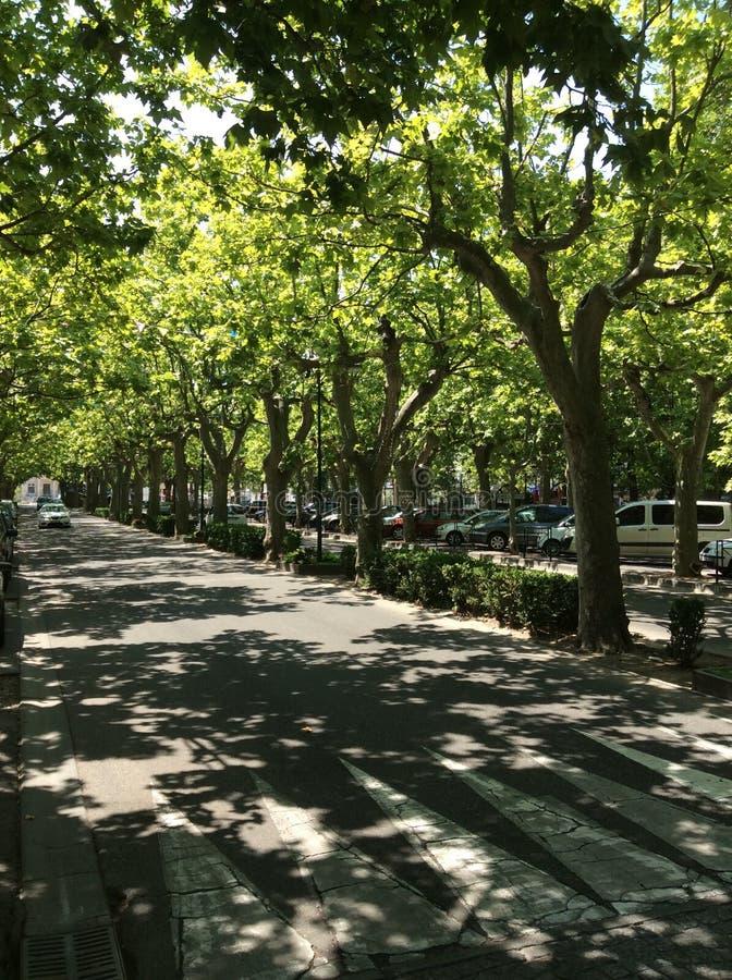 Calle francesa imagen de archivo