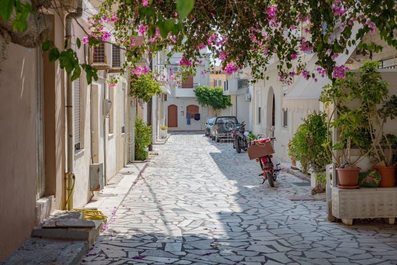 Calle griega del pueblo de la ciudad, casa, árbol, colores foto de archivo libre de regalías