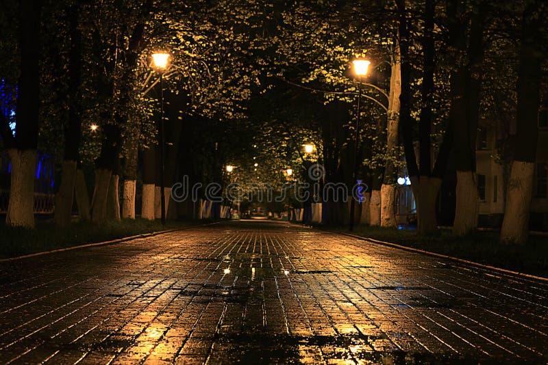 Calle lluviosa del paisaje fotografía de archivo