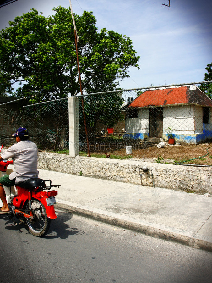 calle mecico lomo στοκ φωτογραφία με δικαίωμα ελεύθερης χρήσης