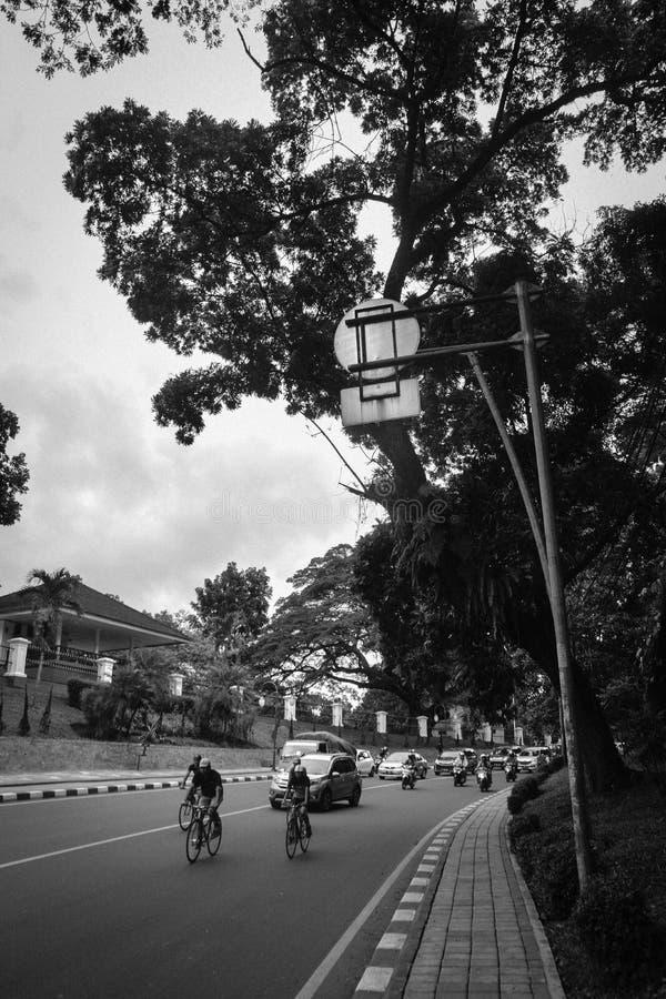 Calle peatonal ocultada foto de archivo libre de regalías