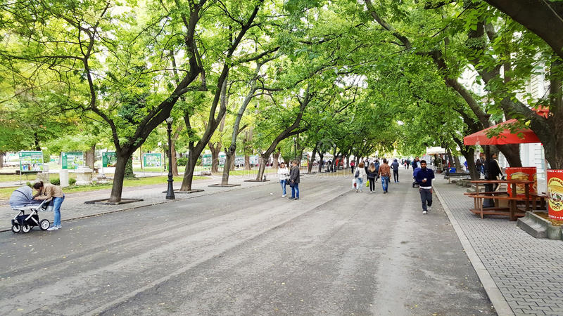 Calle principal con los árboles verdes en Stara Zagora imagen de archivo