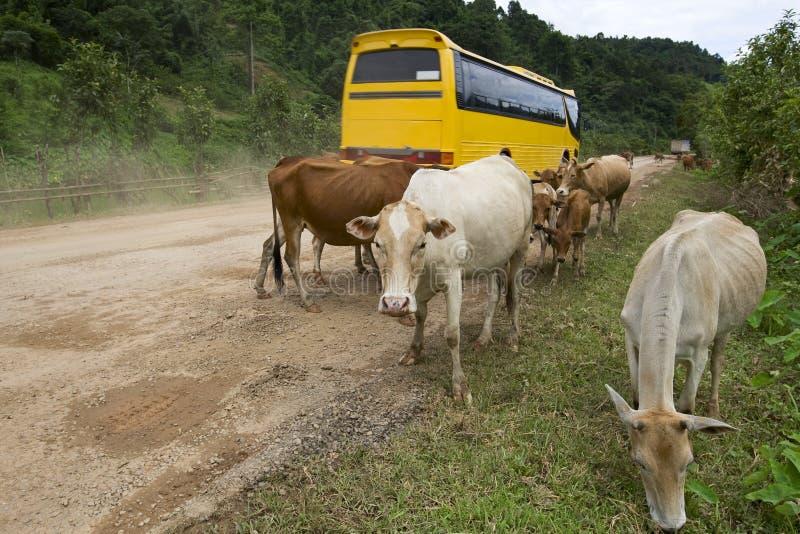 Calle principal en Laos fotos de archivo