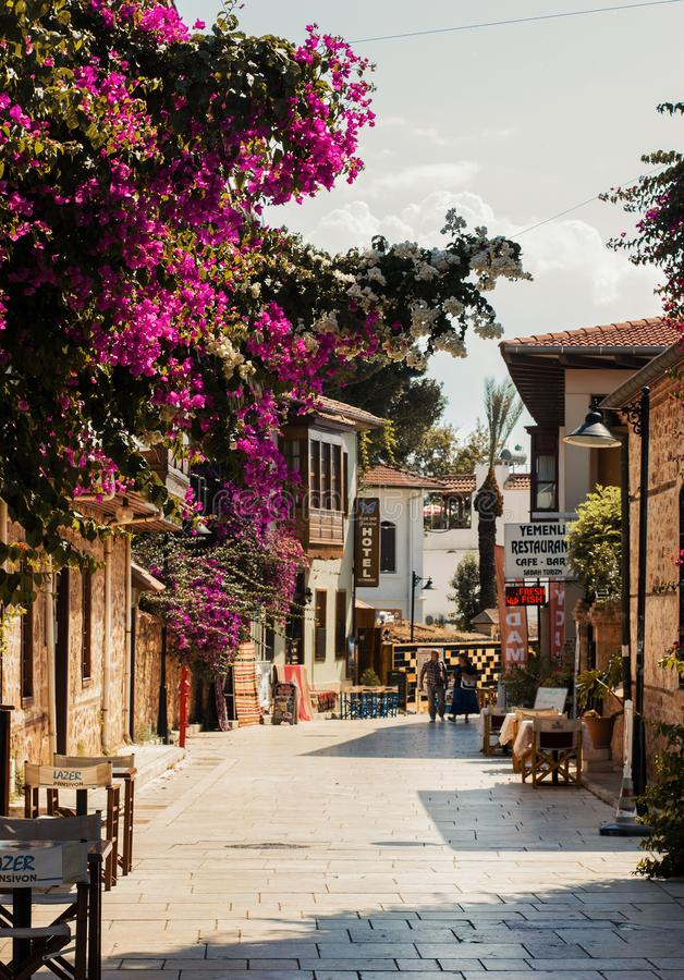 Calle que camina soleada con las flores púrpuras florecientes en el centro histórico de Antalya - Kaleici, Turquía imágenes de archivo libres de regalías