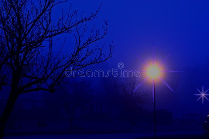 Calle suburbana oscura misteriosa de niebla fotos de archivo libres de regalías