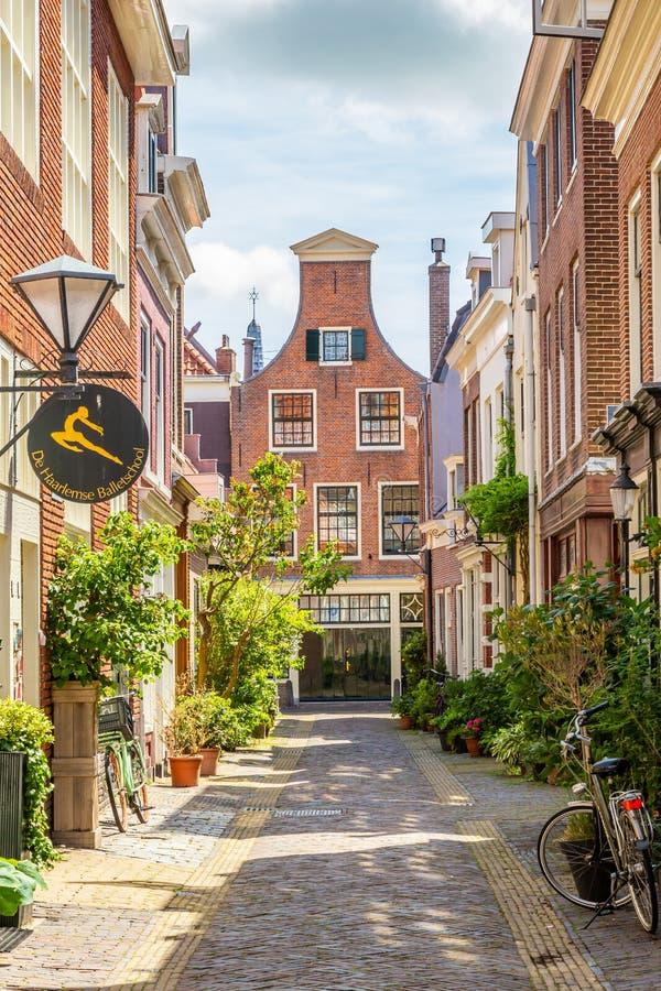 Calle verde acogedora en Haarlem en los Países Bajos fotografía de archivo libre de regalías