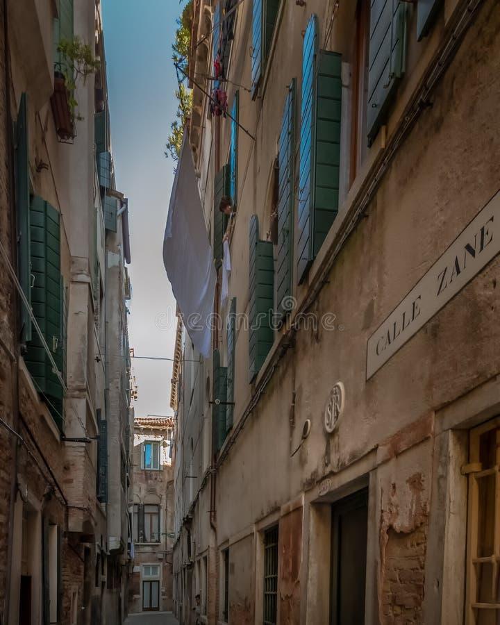 Calle Zane royaltyfria bilder