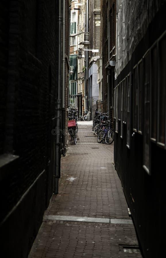 Callejón de Amsterdam foto de archivo libre de regalías