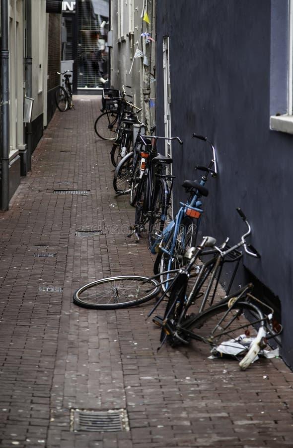 Callejón de Amsterdam fotografía de archivo