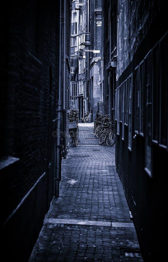 Callejón de Amsterdam imágenes de archivo libres de regalías