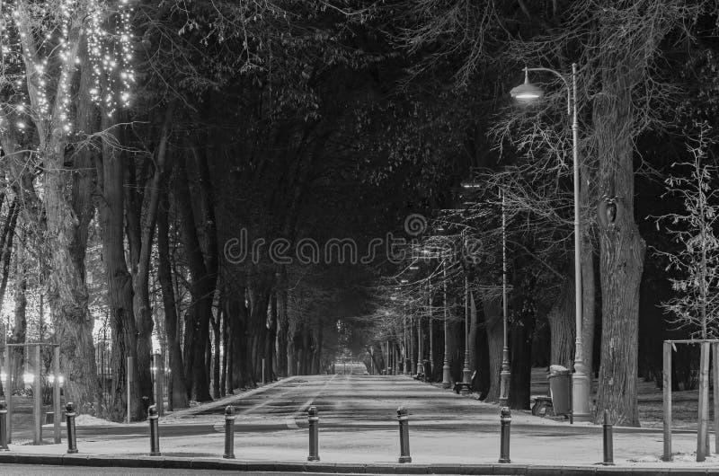 Callejón de la ciudad europea, invierno de la noche, Bucarest Rumania foto de archivo
