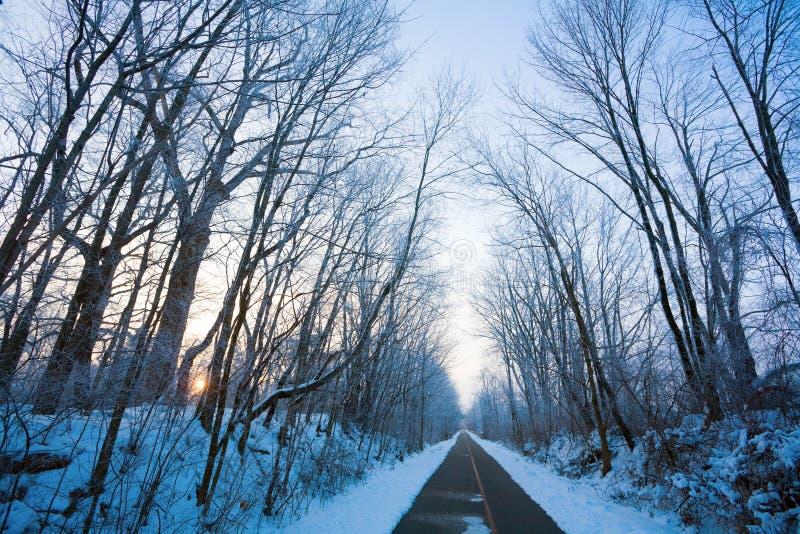 Callejón del invierno imagenes de archivo