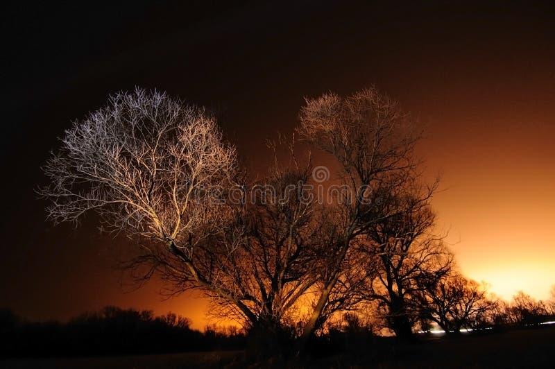 Callejón del invierno fotos de archivo