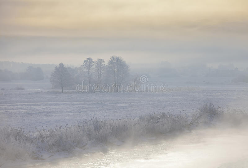 Callejón del invierno en la noche fotografía de archivo libre de regalías