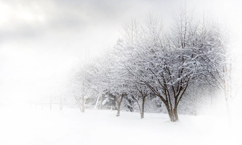 Callejón del invierno hermoso imagen de archivo