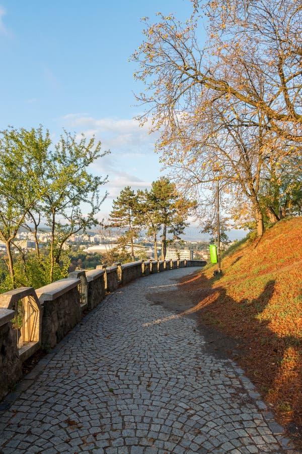 Callejón en el parque de Cetatuia, conocido como colina de Cetatuia, en un día soleado en Cluj-Napoca, Rumania foto de archivo