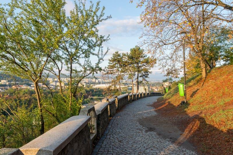 Callejón en el parque de Cetatuia, conocido como colina de Cetatuia, en un día soleado en Cluj-Napoca, Rumania fotos de archivo libres de regalías