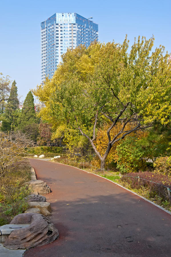 Callejón en el parque de la ciudad imagen de archivo