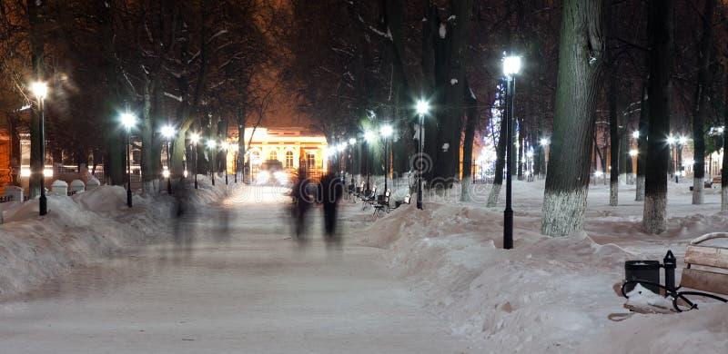 Callejón en el parque del invierno imagen de archivo