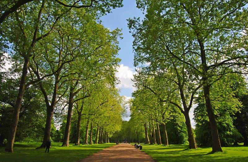 Callejón en los jardines de Kensington en Londres imagen de archivo libre de regalías