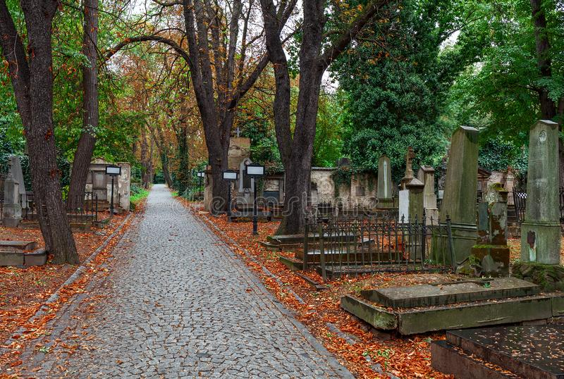 Callejón entre sepulcros en cementerio en Praga imagenes de archivo