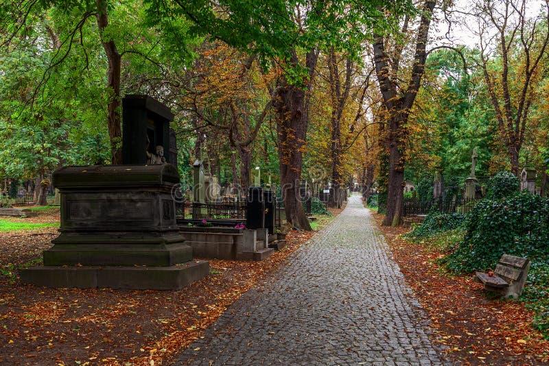 Callejón entre sepulcros en cementerio viejo en Praga fotografía de archivo libre de regalías