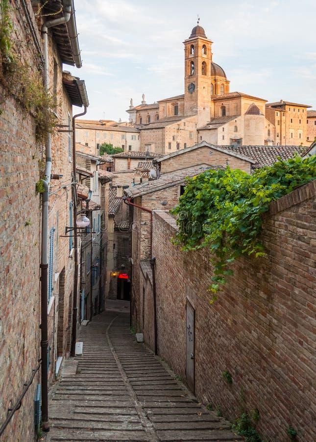 Callejón estrecho en el centro de ciudad de Urbino fotografía de archivo