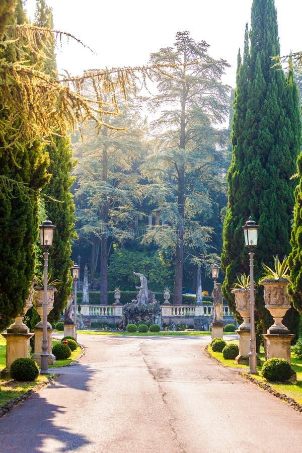Callejón hermoso del parque en un estilo clásico con las estatuas, el estuco y los enebros fotos de archivo libres de regalías